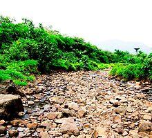 Patalganga River, Khopoli  by Sunil Bhardwaj