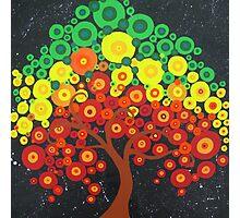 Trees of Joy Photographic Print