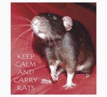 Keep calm and carry rats  by mindgoop