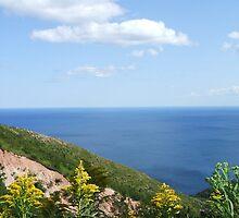 Cape Breton - Golden Rod by Lady-Di