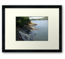 The TIDAL FOSSIL COLLECTION! Framed Print