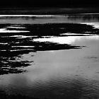 Lake Mood by Geoff Smith
