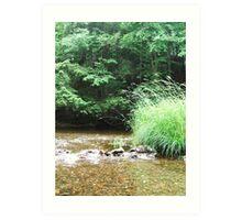 Green Grass - Smiley's Park, NS Art Print