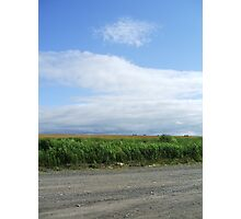 Blue Skies and Gravel Roads - Courthouse Hill, NS Photographic Print