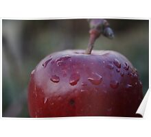 Red Apple Macro Poster