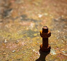 Nut and Bolt by dicknixon