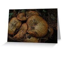 Mushroom Pancakes Greeting Card