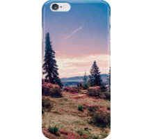 Ohme Garden Vista 2 iPhone Case/Skin