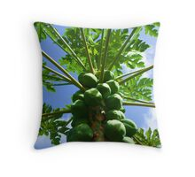 Put the Lime in the Coconut Throw Pillow