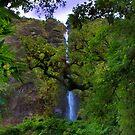 El Chorros Waterfalls of Giron XII by Al Bourassa