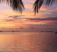 Key Largo Sunset by Terra Berlinski