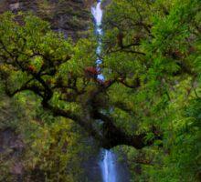 El Chorros Waterfalls of Giron XII Sticker