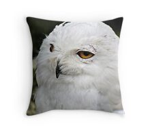 """"""" Why is there no snow in Cornwall?"""" Throw Pillow"""