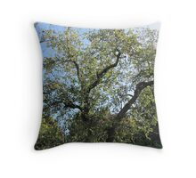Summers Day in Ireland Throw Pillow