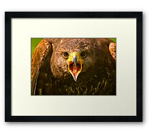Open Wide. Framed Print