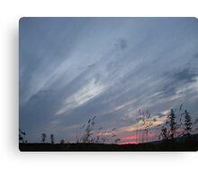 Brush Srokes in The Sky...... Canvas Print