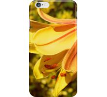 Yellow Lily in the Sun iPhone Case/Skin