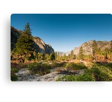 kings canyon valley Canvas Print