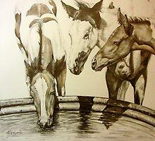 Water Paints by wildwindart