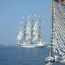 tallships 2005 by sailing