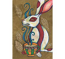 March Hare Photographic Print