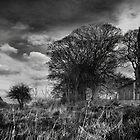 Drumcliffe Church, Co Sligo, Ireland. by 2cimage