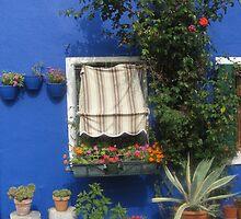 Azzurro Di Burano by CereK