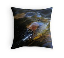 Leaves in a Stream  Throw Pillow