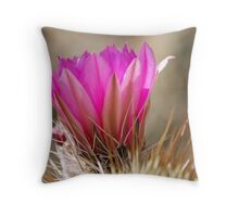 Sonoran Delight Throw Pillow