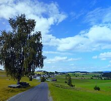 Old tree, country road and a cloudy sky | landscape photography by Patrick Jobst
