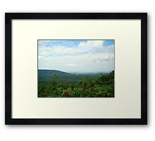 Small Piece of Cheeha State Park Framed Print