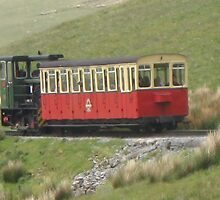 Snowdon Mountain Railway by leunig