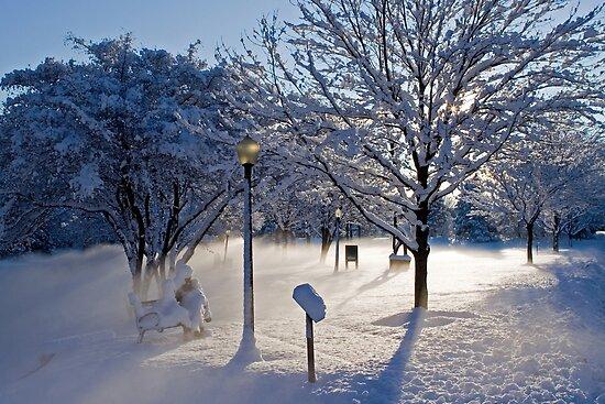 Winter's Blanket by Mark Van Scyoc