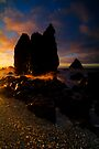 Seal Point at sunset 3 by Paul Mercer
