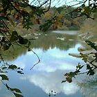 Paluxy River Through the Trees by Susan Russell