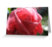 Mademoiselle Precious Rose Greeting Card