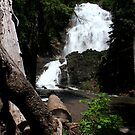 Morrell Falls by Terence Russell