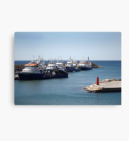 Fishing fleet. Canvas Print