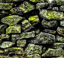 Stoned by Simon Duckworth