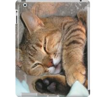 Mother Tabby Cat Suckling Four Newborn Kittens iPad Case/Skin