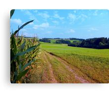 Hiking trail into beautiful scenery | landscape photography Canvas Print