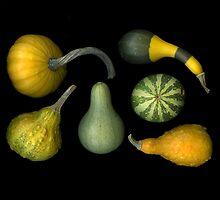 Harvest by scankunst
