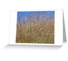Sky Grass Greeting Card