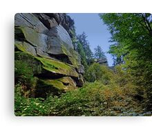 Mountain, granite rocks and pure nature | landscape photography Canvas Print