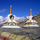 kunzum pass. northern india  by tim buckley | bodhiimages