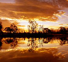 On Golden Pond... by Steve Chapple