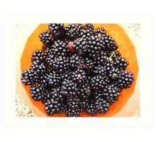 Blackberries harvest Art Print
