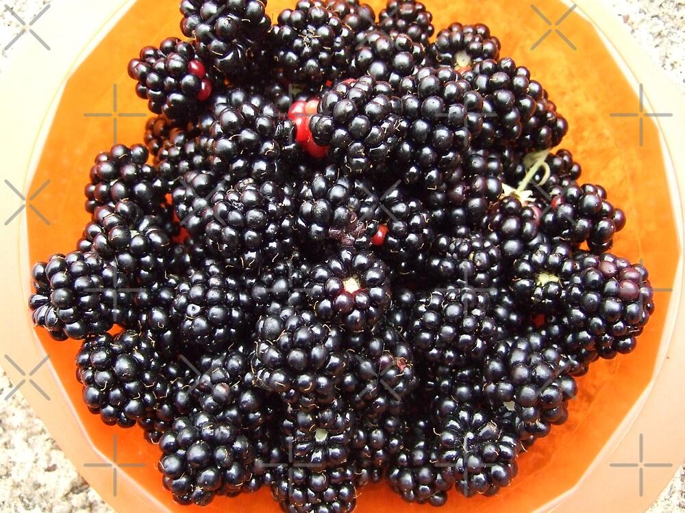Blackberries harvest by Themis