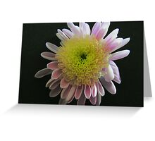 Lilac and Yellow Greeting Card
