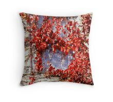 Lace Curtained Window Throw Pillow